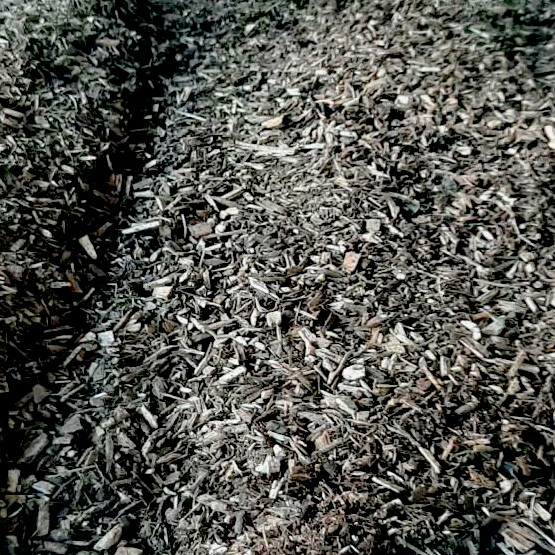 BigBag Bio Waldboden